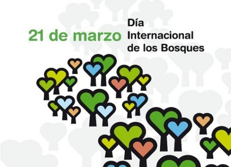 dia_internacional_bosques_2013 recortada